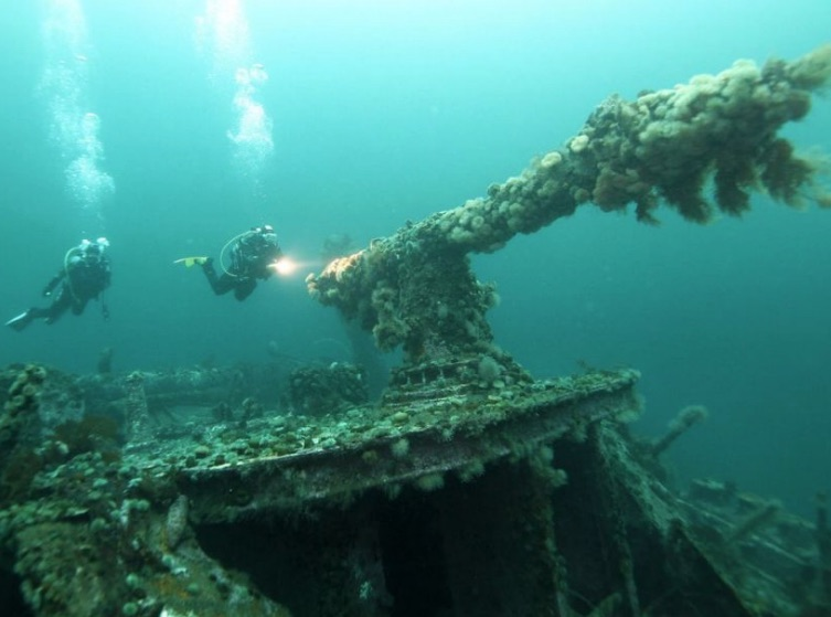 Armed Forces to sweep explosives from Nazi-sunk ships off Newfoundland