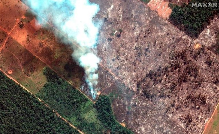 Forest Fire in the Amazon rainforest
